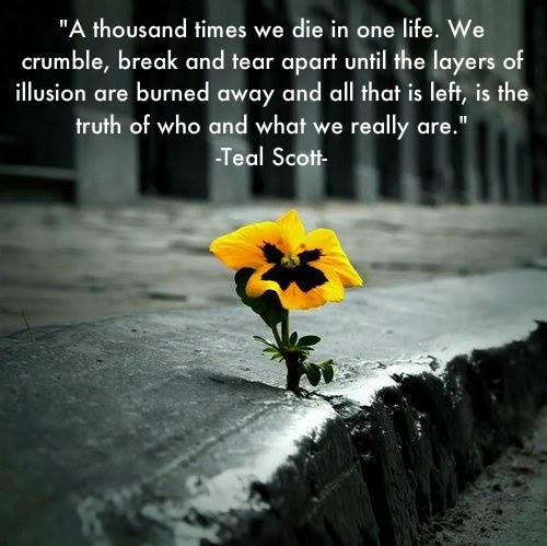 20 Quotes About Death And Life With Sayings Quotesbae