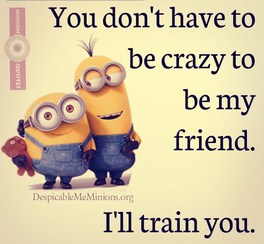 Quotes About Friendship Funny 03
