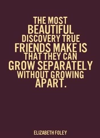 Quotes About Friendship Funny 04