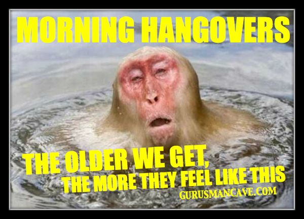 Very funny hangover memes photos