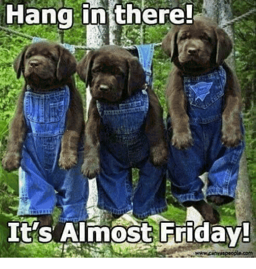Almost Friday Meme Funny Image Photo Joke 02