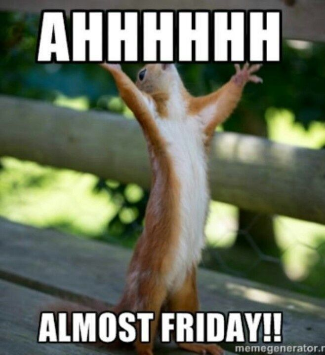 Almost Friday Meme Funny Image Photo Joke 09
