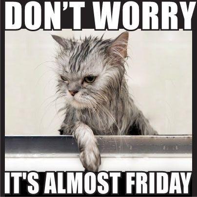 Almost Friday Meme Funny Image Photo Joke 13