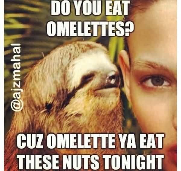 Amusing dirty sloth memes joke