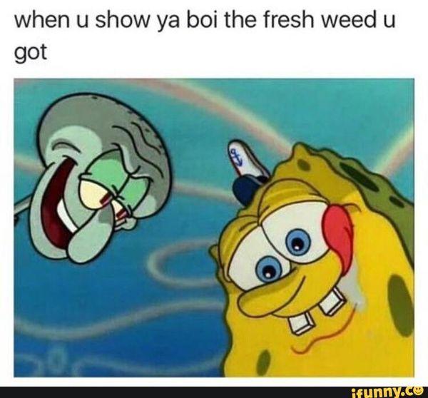 Amusing spongebob weed memes picture