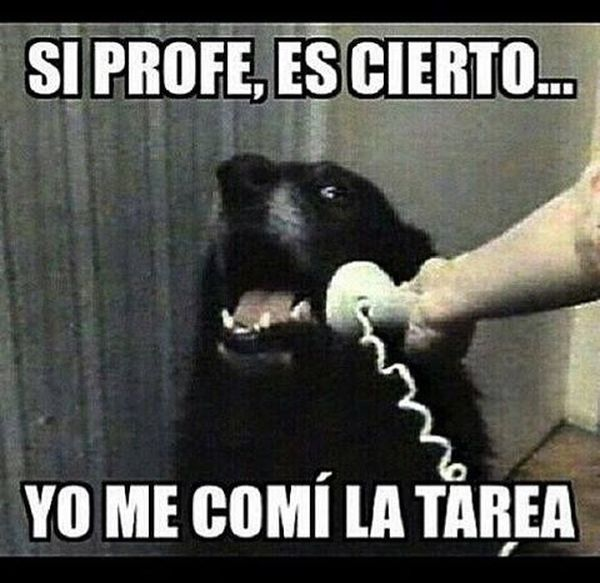 Amusing usual spanish joke meme image