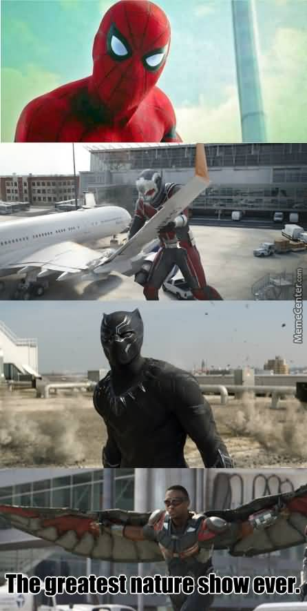Black Panther Meme Funny Image Photo Joke 03