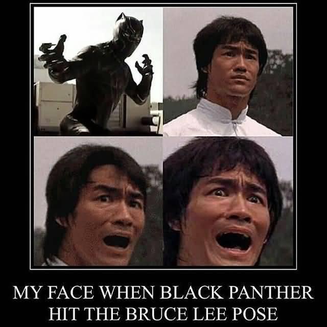 Black Panther Meme Funny Image Photo Joke 04
