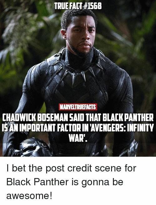 Black Panther Meme Funny Image Photo Joke 09