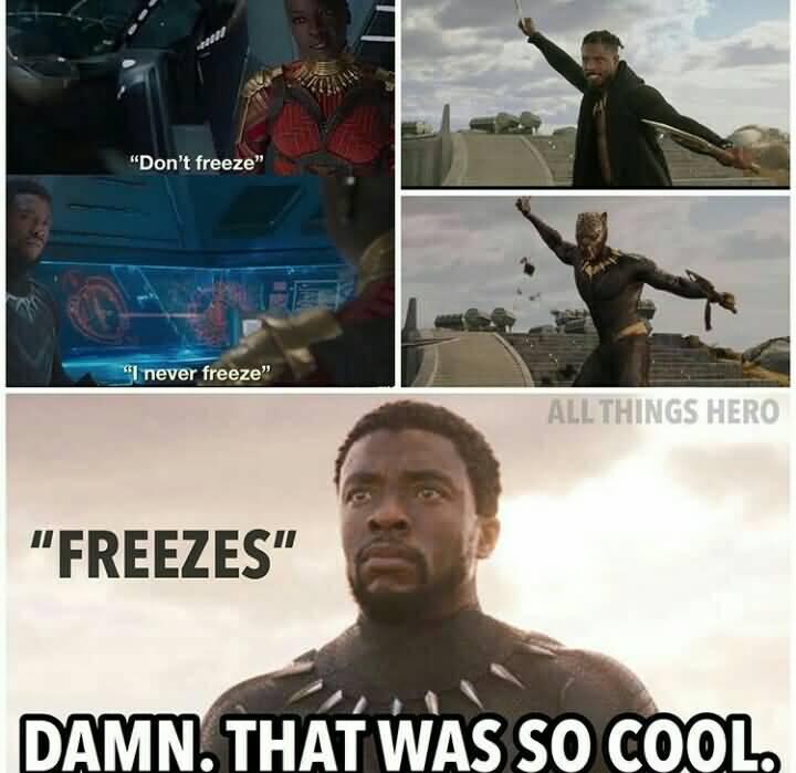 Black Panther Meme Funny Image Photo Joke 13
