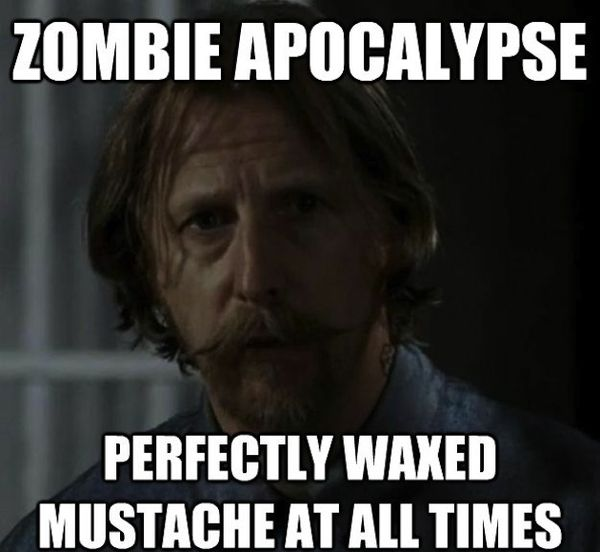 Funniest the walking dead memes photo