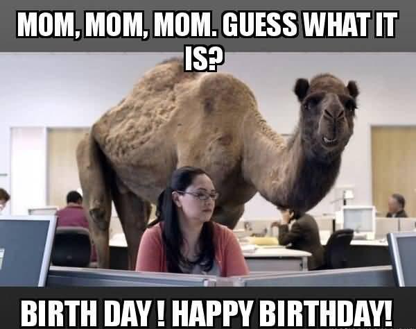 Funny Birthday Memes For Mom Joke 04