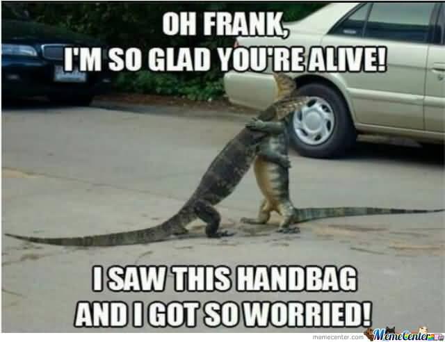 Funny Florida Meme Funny Image Photo Joke 07
