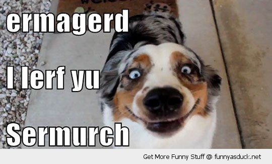 Funny I Love You Meme Joke Image 03
