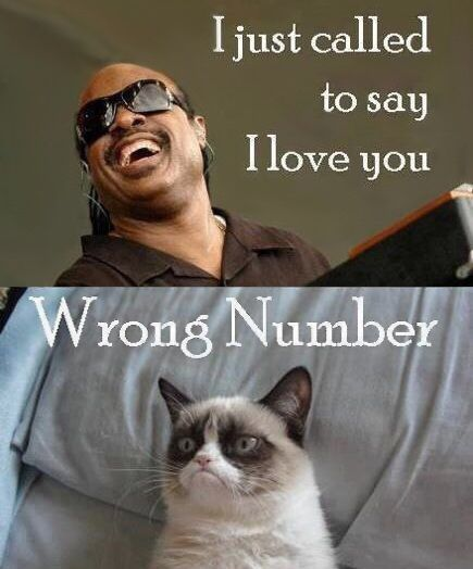 Funny I Love You Meme Joke Image 13