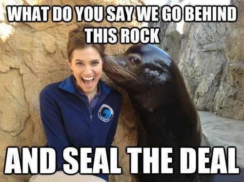 Funny Memes 2016 Funny Image Photo Joke 07