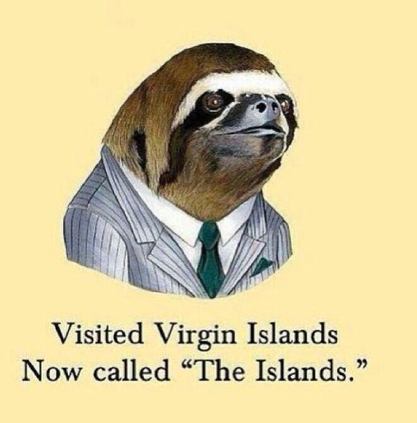 Funny amazing pervy sloth whisper meme photo