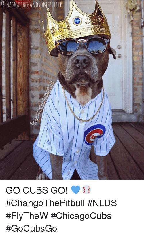 Go Cubs Go Meme Image Photo Joke 04