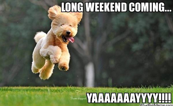 Hilarious Long Weekend Meme Image Joke