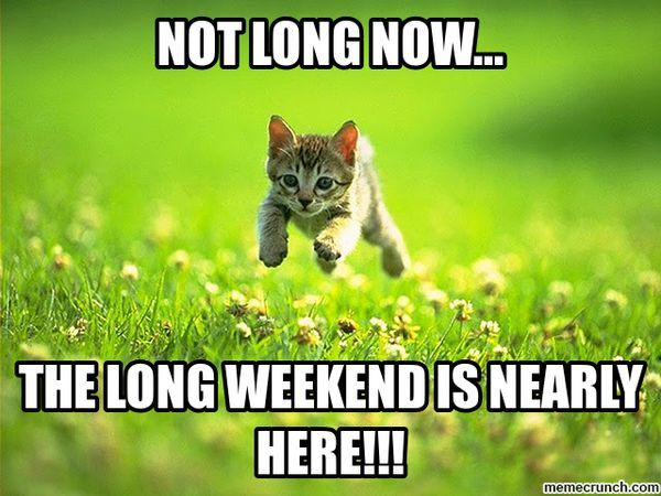 Hilarious Long Weekend Meme Picture