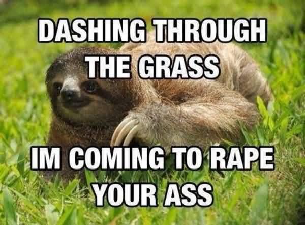 Hilarious true rapist sloth meme image