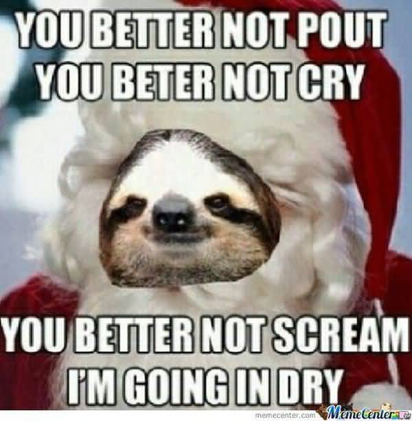 Hilarious usual funny perverted sloth memes photo