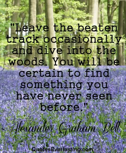 Woods Quotes: 25 Into The Woods Quotes And Sayings Collection