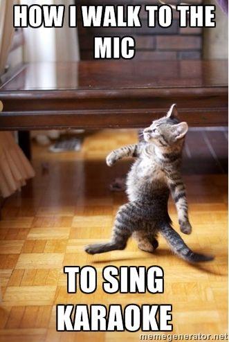 Karaoke Meme Funny Image Photo Joke 13