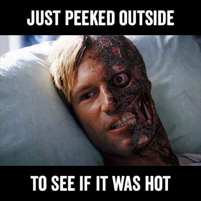 Melting Meme Funny Image Photo Joke 08