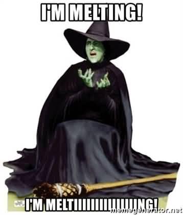 Melting Meme Funny Image Photo Joke 16