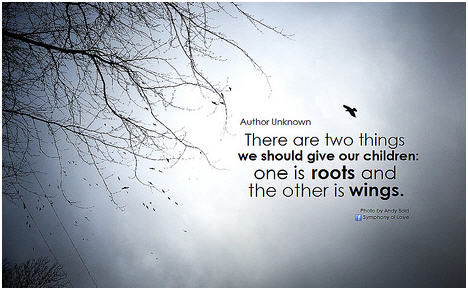 Roots And Wings Quote Meme Image 17