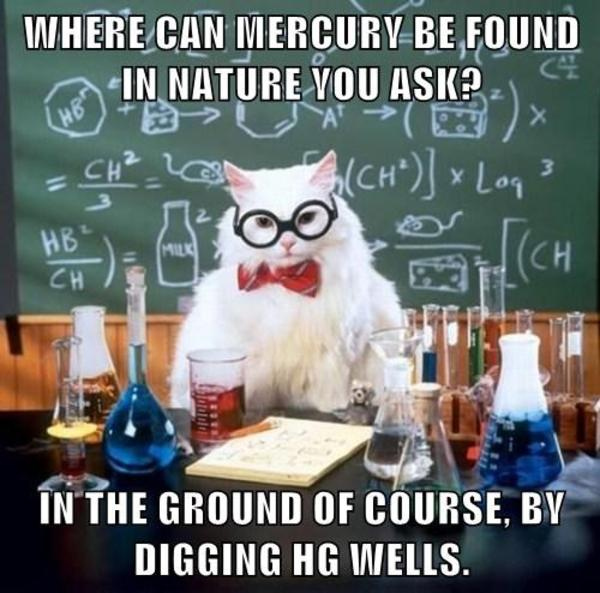 Science Cat Meme Funny Image Photo Joke 04