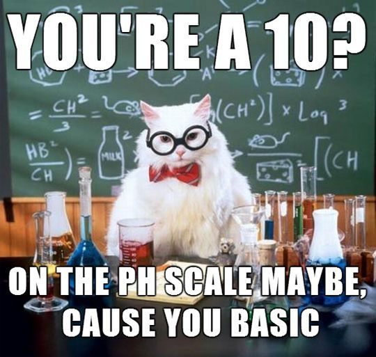 Science Cat Meme Funny Image Photo Joke 12