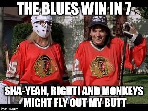 St Louis Blues Meme Funny Image Photo Joke 01