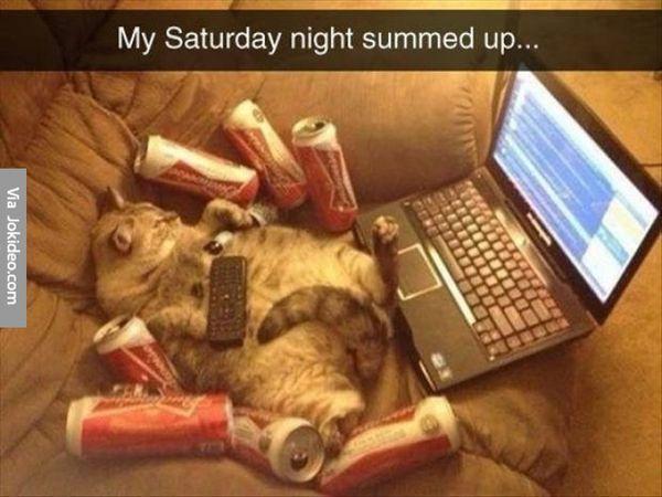 Very Funny Saturday Memes Photo