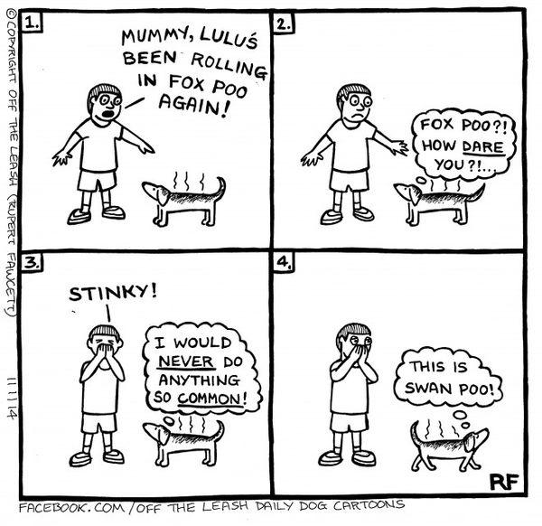 Very Funny naughty cartoon photos wallpaper