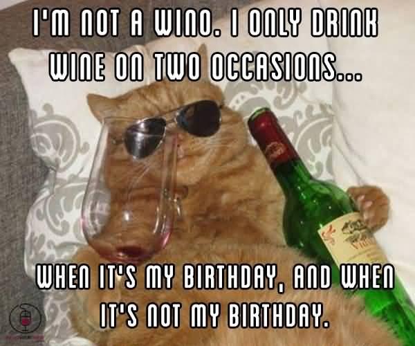 Wine Meme Funny Image Photo Joke 01