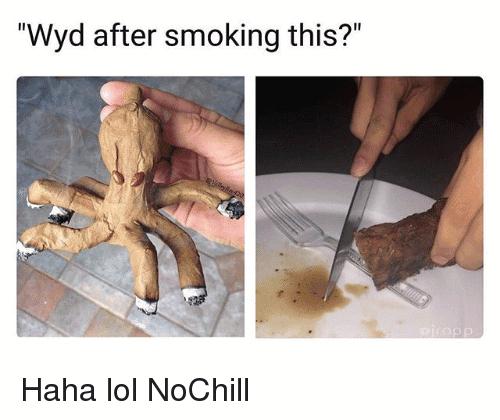 Wyd After Smoking This Meme Photo Joke 15