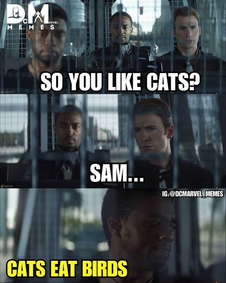 Black Panther Memes 08