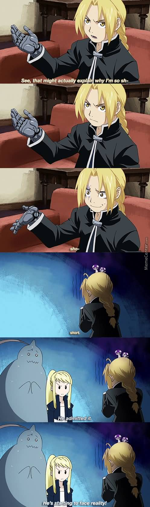 Fullmetal Alchemist Meme Funny Image Photo Joke 12