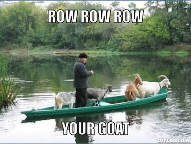 Funny Goat Meme Image Photo Joke 04