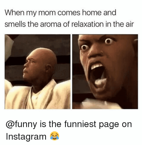 Funny Meme On Instagram Image Photo Joke 10