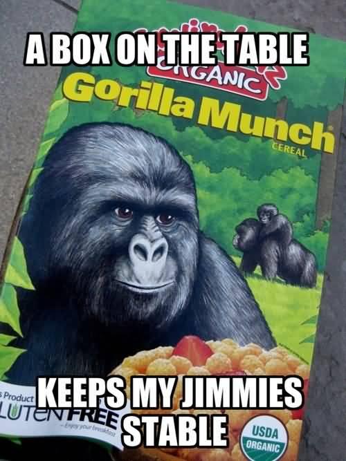Gorilla Munch Meme Funny Image Photo Joke 02