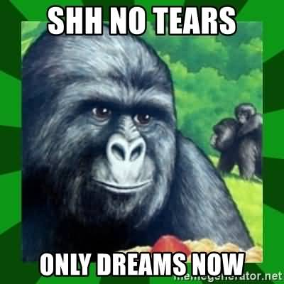 Gorilla Munch Meme Funny Image Photo Joke 05