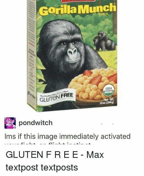 Gorilla Munch Meme Funny Image Photo Joke 08