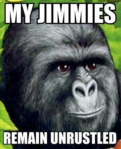 Gorilla Munch Meme Funny Image Photo Joke 09