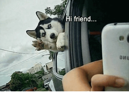 Hi Friend Meme Funny Image Photo Joke 02
