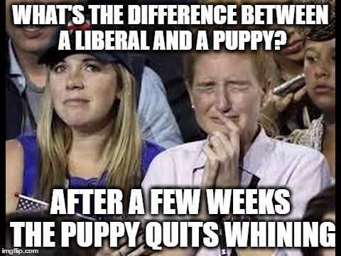 Liberals Crying Meme Funny Image Photo Joke 06