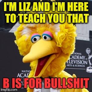 Liz Meme Funny Image Photo Joke 01