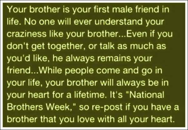 Quotes About Loving Your Brother 60 QuotesBae Inspiration Quotes About Loving Your Brother